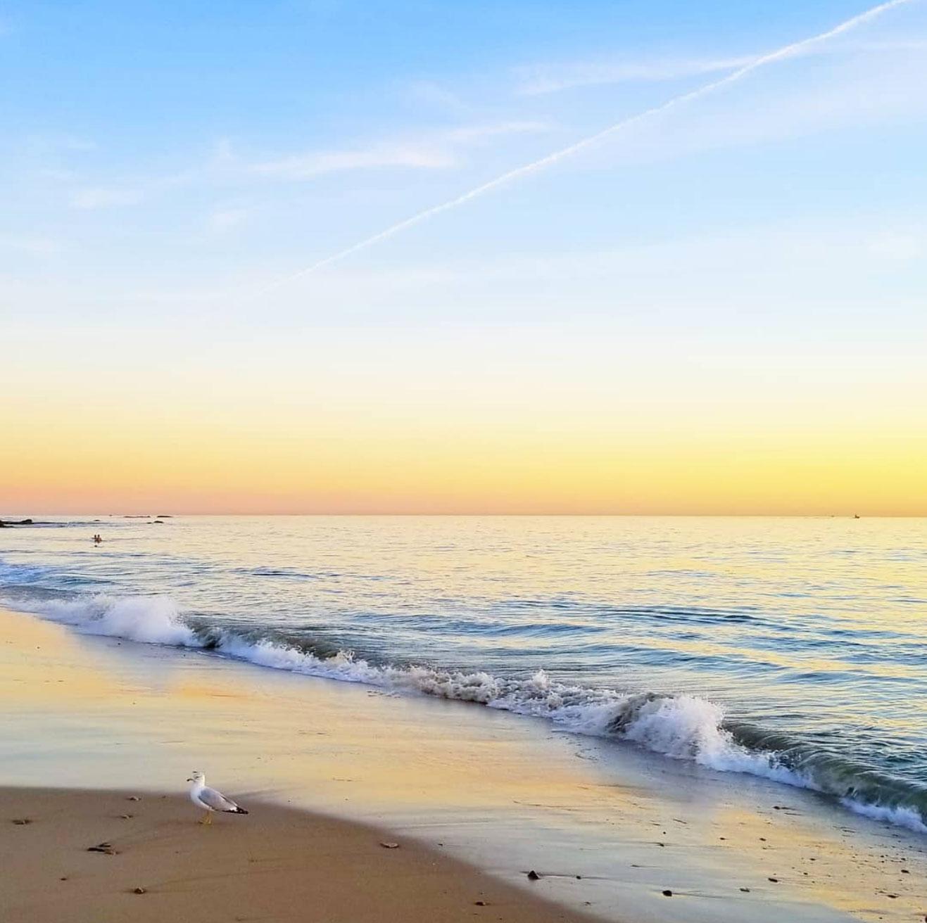 28bee02ebb Magical mornings beach